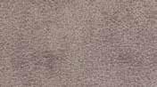 Salvadora Color 03 Brown
